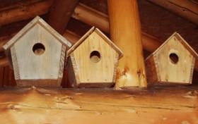 cabanes oiseaux 3 caribous